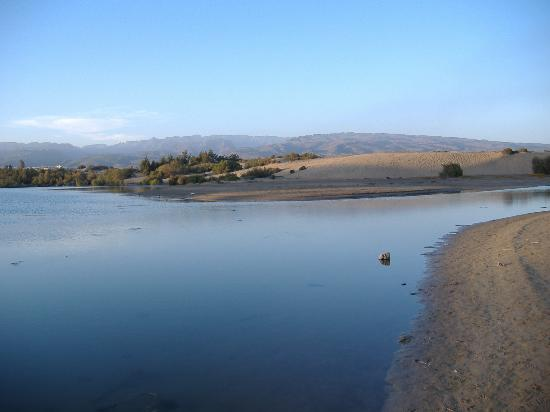 Maspalomas, İspanya: la charca y las dunas