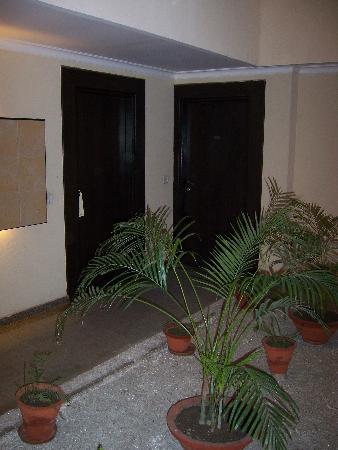 Jukaso IT Suites Gurgaon : Atrium outside of room