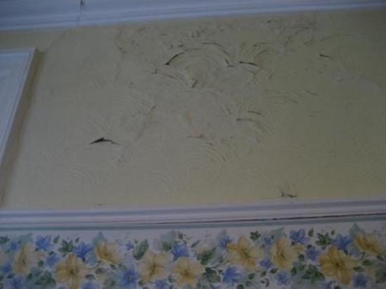 Dale Lodge Hotel: Flaky plaster on walls