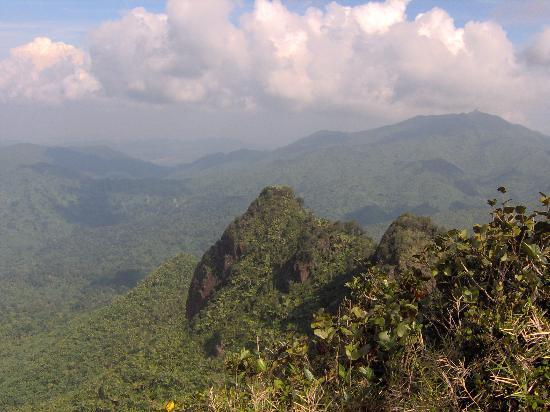 El Yunque National Forest, เปอร์โตริโก: Top of el yunque