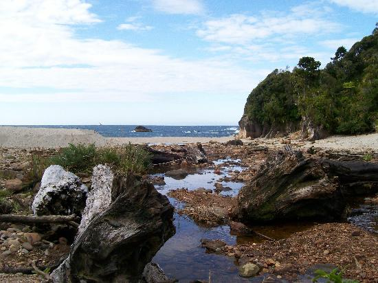 Lake Moeraki, Nowa Zelandia: Monro Beach: A lovely walk from Wilderness Lodge