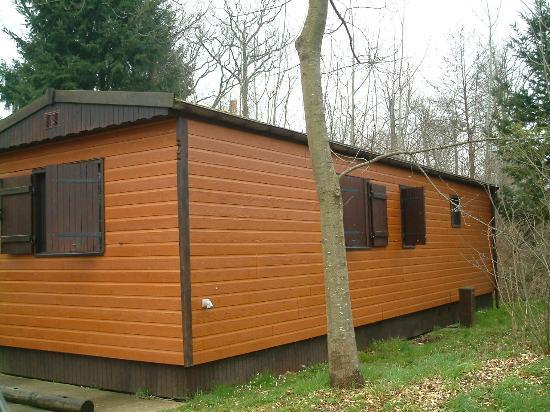 Disney's Davy Crockett Ranch : External shot of cabin