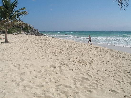 view of beach from la conchita picture of hotel calaluna. Black Bedroom Furniture Sets. Home Design Ideas
