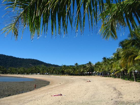 Whitsunday Adaları, Avustralya: This is Airlie Beach half tide