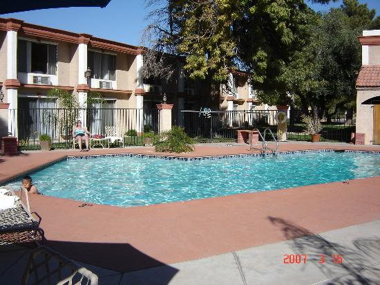 BEST WESTERN Phoenix Goodyear Inn: Pool Area