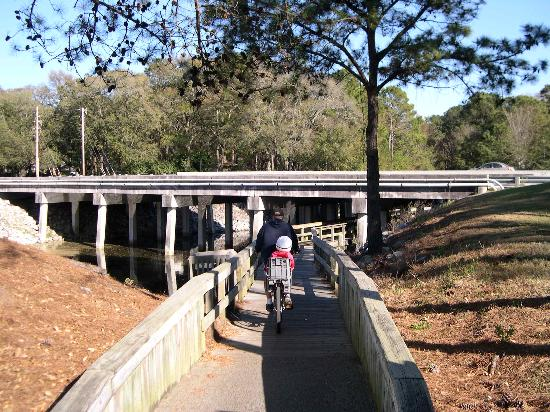 Disney's Hilton Head Island Resort: Part of the path to the ocean