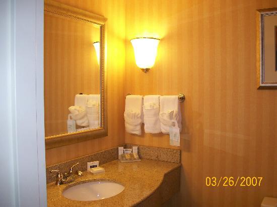 Hilton Garden Inn Atlanta NW / Kennesaw Town Center: Bath Amenities