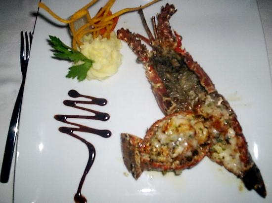 Luxury Bahia Principe Cayo Levantado Don Pablo Collection: lobster dinner from gourmet restaurant