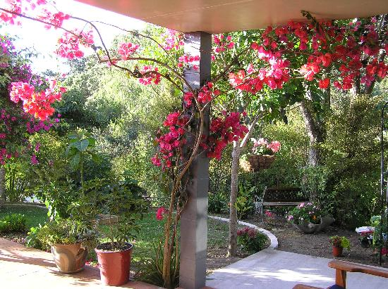 Ferry Landing Lodge: Garden @Bougainvillea suite door