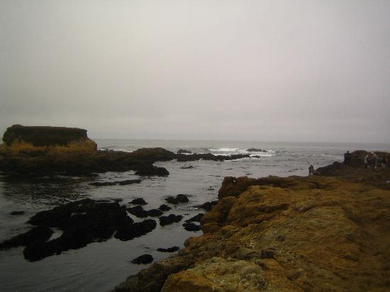 Glass Beach Photo