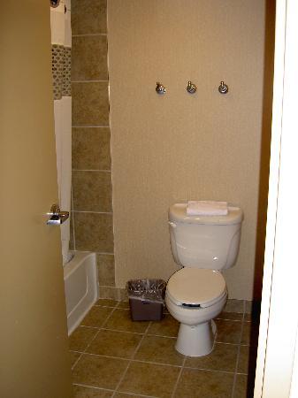 Baymont Inn & Suites Houston: Bathroom