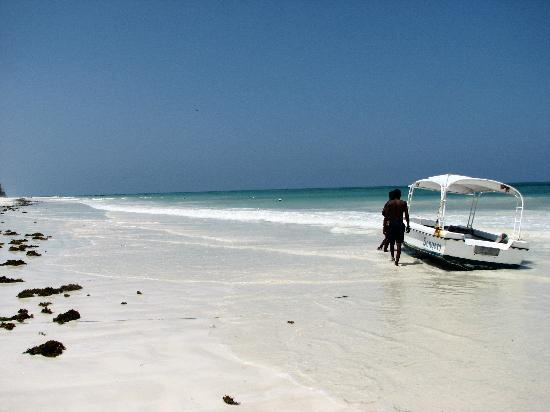 Pinewood Beach Resort & Spa: hotel beach