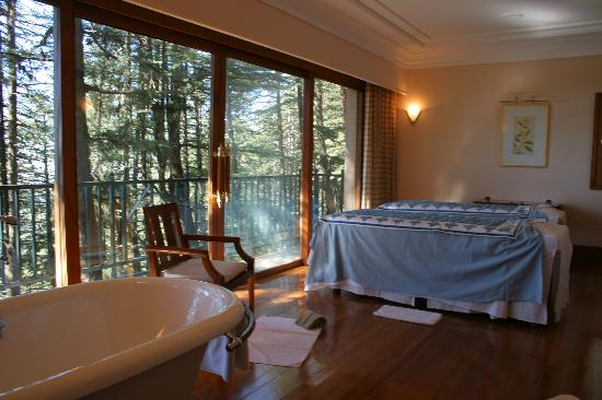 Wildflower Hall, Shimla in the Himalayas: Treatment Room over Himalayan Cedar Forest
