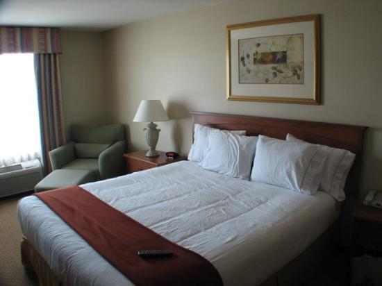 Holiday Inn Express Hotel & Suites Carson City: Easy Chair