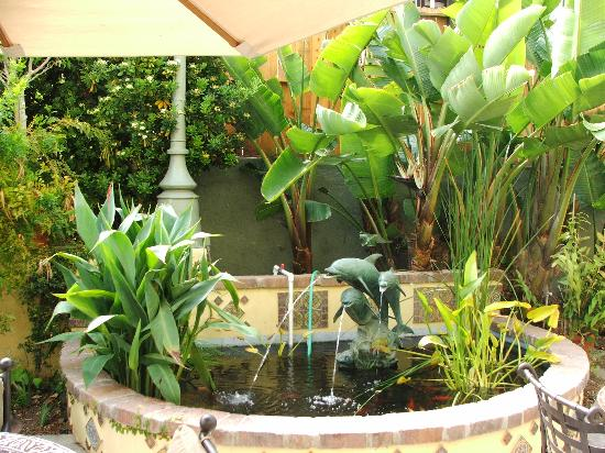 The Avalon Hotel: Coy pond on the patio