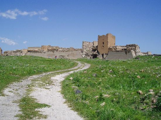 Kars Province, Turkey: Looking back to the Lion Gate