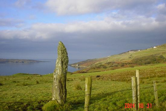 Clifden Castle: STANDING STONE ON RD TO RUINS