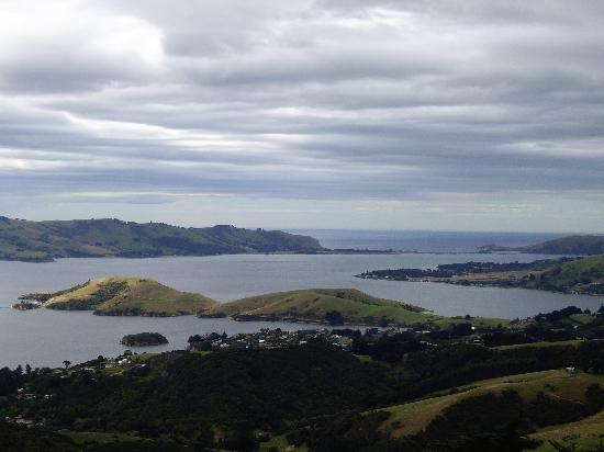 Isla Sur, Nueva Zelanda: View of Dunhedin Bay from Larnach Castle