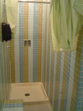Greyhills Inn: Shower