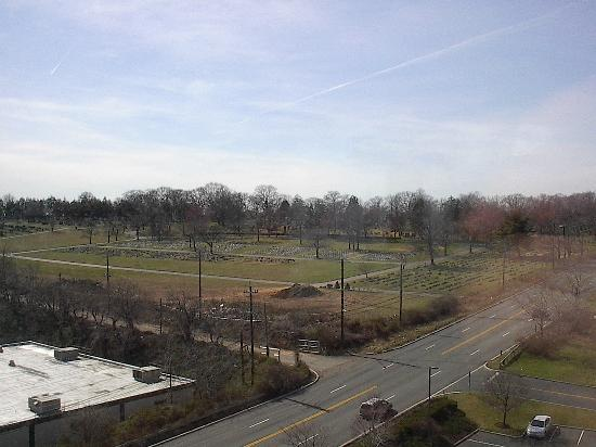 Renaissance Meadowlands Hotel: View was a cemetary and highway, but hey it IS Jersey.