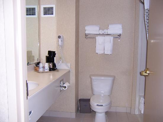 Hampton Inn Boston-Logan Airport: Bathroom with coffee maker and hair dryer