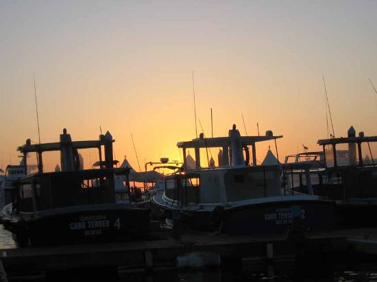 Early Rise For Deep Sea Fishing Picture Of Cabo San