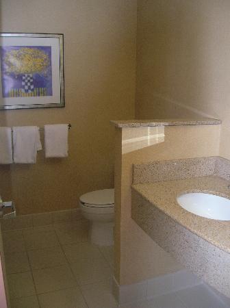 Courtyard Hattiesburg: bathroom