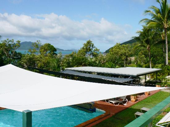 Hibiscus Apartments: The view over the pool's shade sail