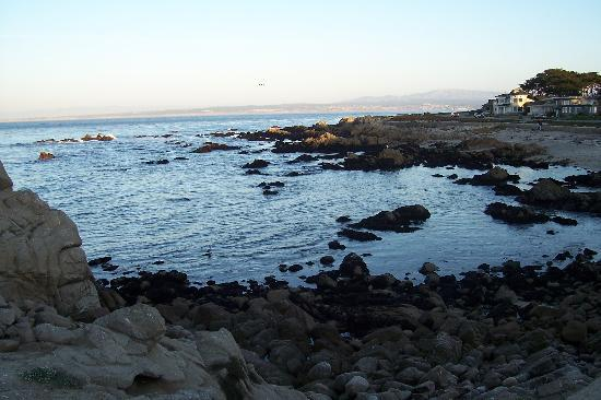 Pacific Grove Image