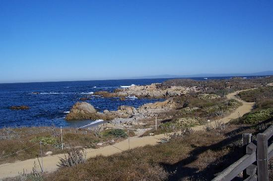 Pacific Grove Bild