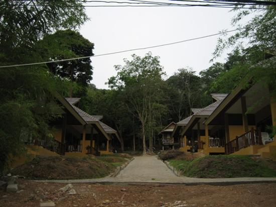 Tonsai Bay Resort : The bungalows where we stayed