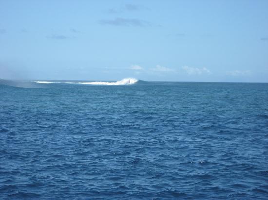 Royal Davui Island Resort: surfing Friggats reef