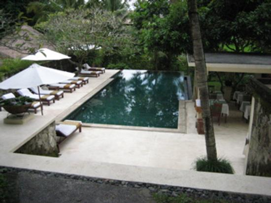 Komaneka at Monkey Forest : Secluded swimming pool by rice padis