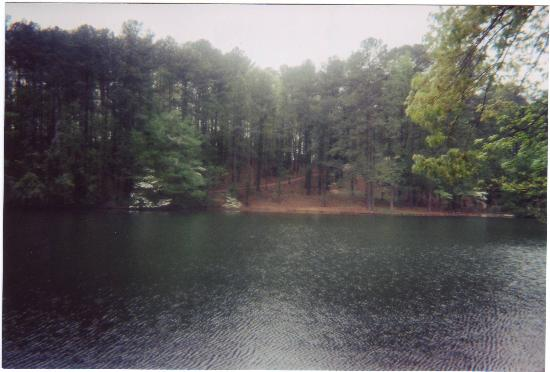 Hoover, AL: Peaceful Lake
