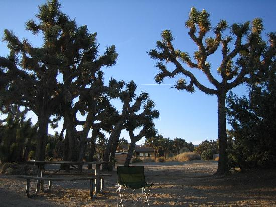 Black Rock Campground Picture