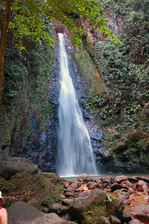 Dominica: Syndicate Falls