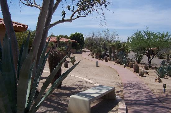 Rancho de los Caballeros : Rooms and grounds