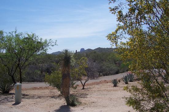 Rancho de los Caballeros : View of area (Quiet)