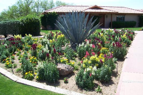 Rancho de los Caballeros : Beautiful gardens