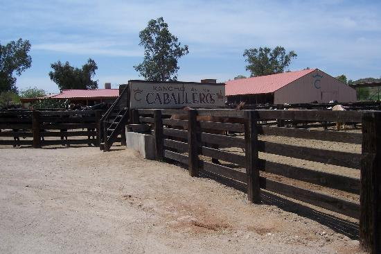 Rancho de los Caballeros: Fun things to do