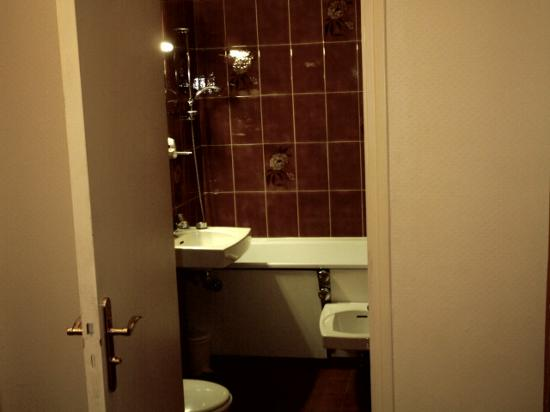 Hotel Rocroy: The bathroom