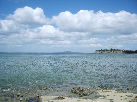 Auckland, Nuova Zelanda: VIEW FORM LONG BAY BEACH