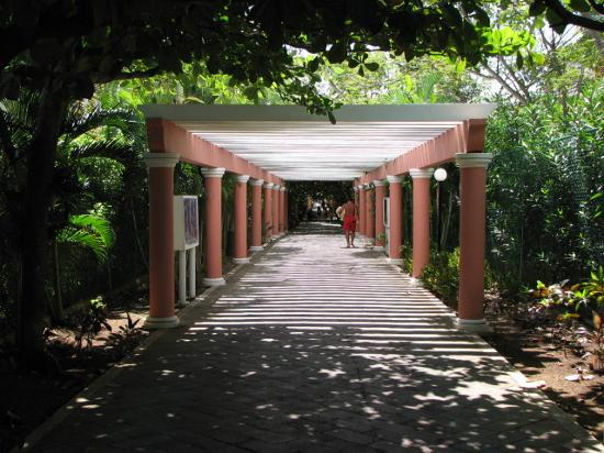 The pathway to the beach