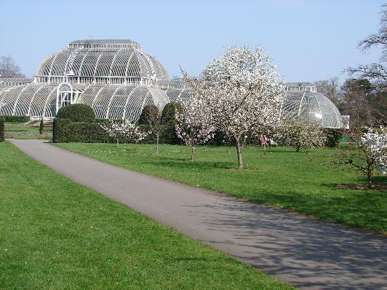 Kew, UK: The Palm House