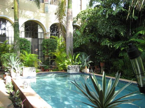 Los Arcos Bed & Breakfast : Paradise