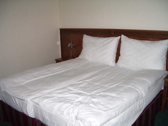 Green Garden Hotel: Bedroom