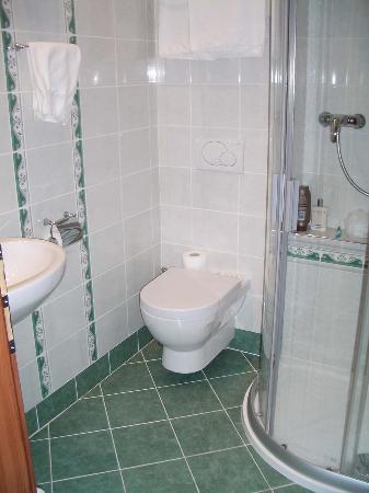 Green Garden Hotel: Shower room