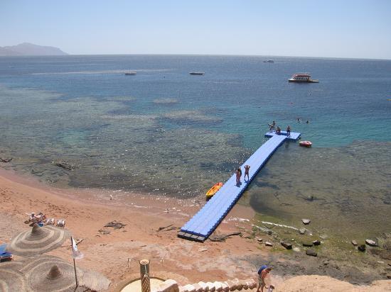 Hilton sharks bay late deals