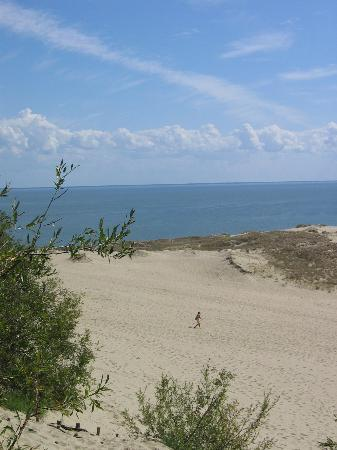 Curonian Spit / Kursiu Nerija National Park Photo