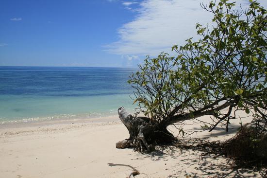 Foto de Desroches Island